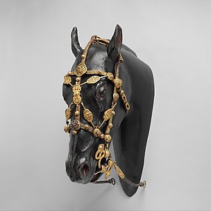Bit and Bridle for Horse