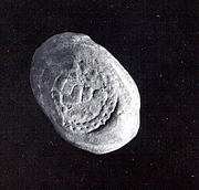 Oval sealing with one circular seal impression