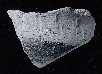 Carinated jar or bowl sherd