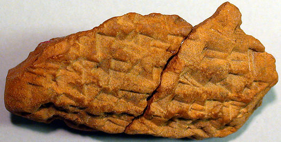 Cuneiform tablet: account of delivery of field rent, Ebabbar archive