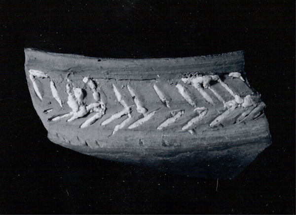Carinated bowl rim sherd
