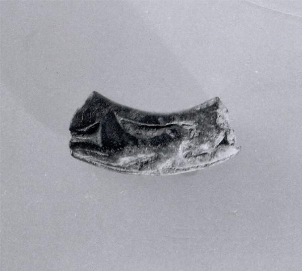 Ring fragment