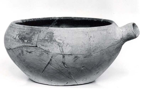 Bowl with spout