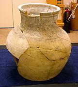Jar sherd