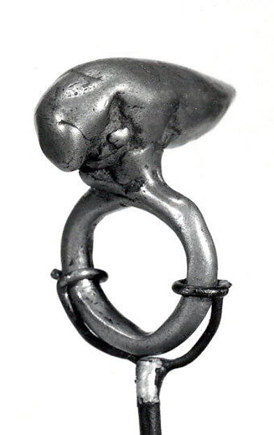Ring: Insect