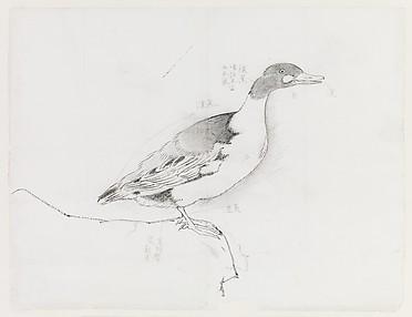 現代   謝稚柳   鴨圖   鏡片<br/>Duck