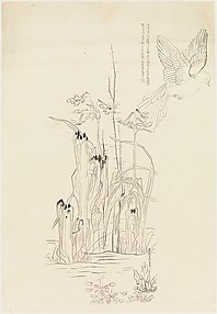 Bird Study with Narcissus and Rock, after Chen Hongshou