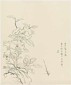 Camellia and Rock, after Chen Hongshou