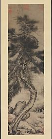 Dragon Pine