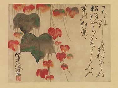 蔦紅葉図  <br/>Autumn Ivy