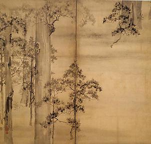 Hinoki Cypresses