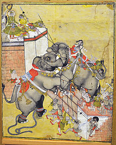 Rao Surjan Watches an Elephant Fight