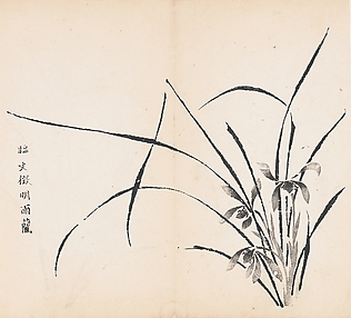 Orchids in Rain, after Wen Zhengming, Leaf from the Ten Bamboo Studio Collection of Calligraphy and Painting, vol. 2