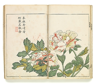 Two Peonies, Leaf from the Japanese edition of the Mustard Seed Garden Painting Manual, vol. 1 of 6