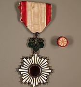 Insignia and Button