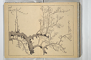 The Four Worthies (Plum, Bamboo, Orchid, Chrysanthemum) (Shikunshi)