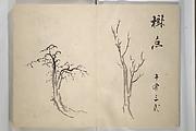 Taigadō (Taiga Hall at Sōrinji Temple) Picture Album (Taigadō gafu)