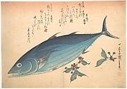 Katsuo Fish with Cherry Buds, from the series Uozukushi (Every Variety of Fish)