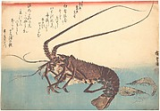 Ise-ebi and Shiba-ebi, from the series Uozukushi (Every Variety of Fish)