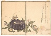 Land Snail (Katatsumuri); Giant Katydid (Kutsuwamushi), from the Picture Book of Crawling Creatures (Ehon mushi erami)