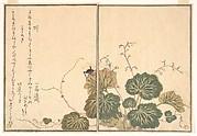 Earthworm (Mimizu); Cricket (Kōrogi), from the Picture Book of Crawling Creatures (Ehon mushi erami)