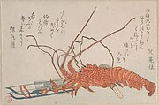 Lobster, Hamayumi (Ceremonial Miniature Bow) with Arrows and Fans