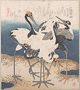 Five Cranes by the Water's Edge, from the series Three Sheets (Mihira no uchi)