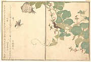 Paper Wasp (Hachi); Hairy Caterpillar (Kemushi), from the Picture Book of Crawling Creatures (Ehon mushi erami)