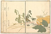 Cone-headed Grasshopper or Locust, (batta); Praying Mantis (Tōrō or Kamakiri), from the Picture Book of Crawling Creatures (Ehon mushi erami)