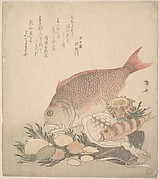 Large and Small Fish Swimming Among Shells and Moss at the Bottom of the Sea