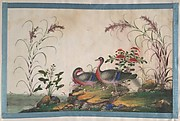 Album Containing Twelve Paintings of Birds