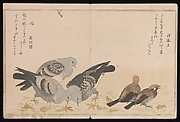 Myriad Birds:A Playful Poetry Contest (Momo chidori kyōka-awase), 2 vols.