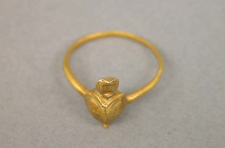Ring with Bezel Composed of Tortoise Motif