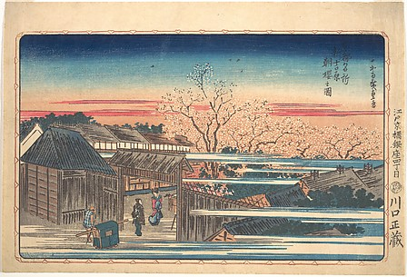 Morning Cherry Blossoms at Shin-Yoshiwara