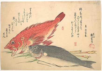 Isaki and Kasago Fish, from the series Uozukushi (Every Variety of Fish)