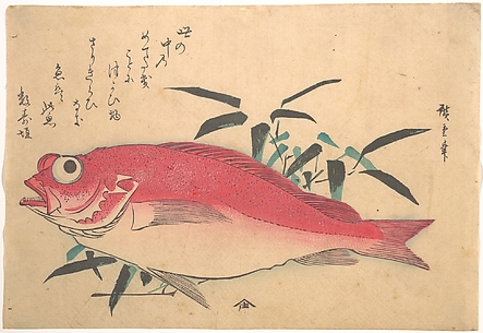 Medetai Fush and Sasaki Bamboo, from the series Uozukushi (Every Variety of Fish)