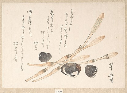 Tsukushi Plant and Shijimi Shells