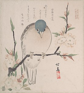 Spring Rain Collection (Harusame shū), vol. 3: Mountain Dove and Peach Flowers