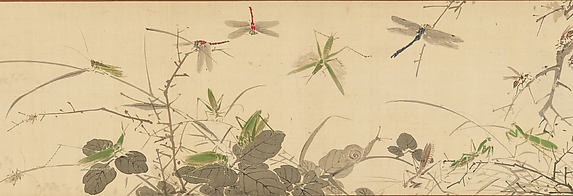 Insects and Grasses