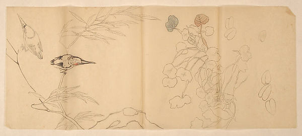Two Studies of Birds on a Willow and Flowering Plants