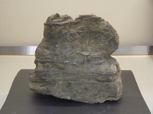 石灰岩奇石  <br/>Scholar's Rock