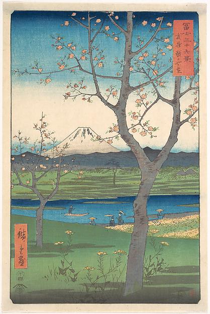 Musashi, Koshigaya Zai