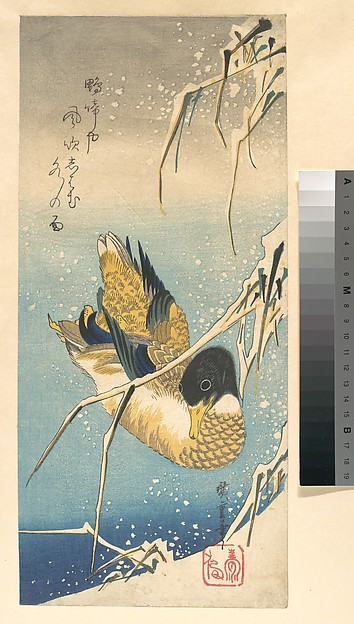 歌川広重画 雪中芦に鴨<br/>Mallard Duck and Snow-covered Reeds