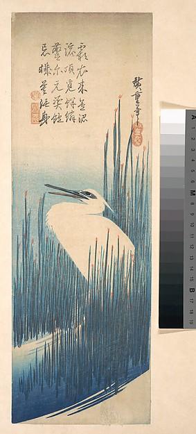 歌川広重画 芦に鷺  <br/>White Heron Standing among Reeds