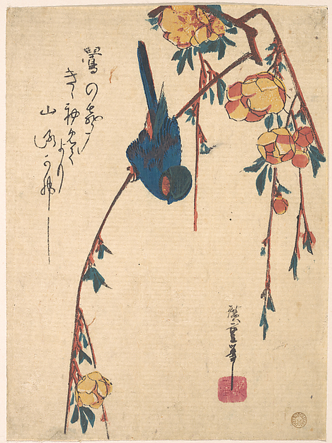 Weeping Cherry and Bluebird
