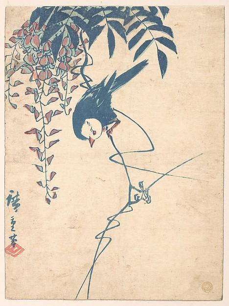 Wisteria and White-headed Bird