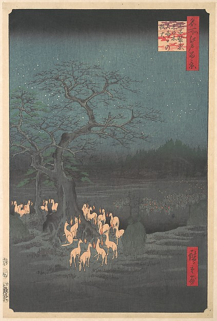 Shozokuenoki Tree at Oji: Fox–fires on New Years Eve