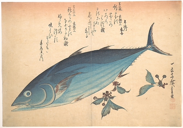 魚づくし 鰹に桜<br/>Katsuo Fish with Cherry Buds, from the series Uozukushi (Every Variety of Fish)