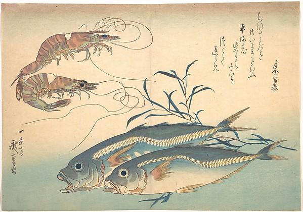 魚づくし 車海老 鯵にたで<br/>Aji Fish and Kuruma-ebi, from the series Uozukushi (Every Variety of Fish)
