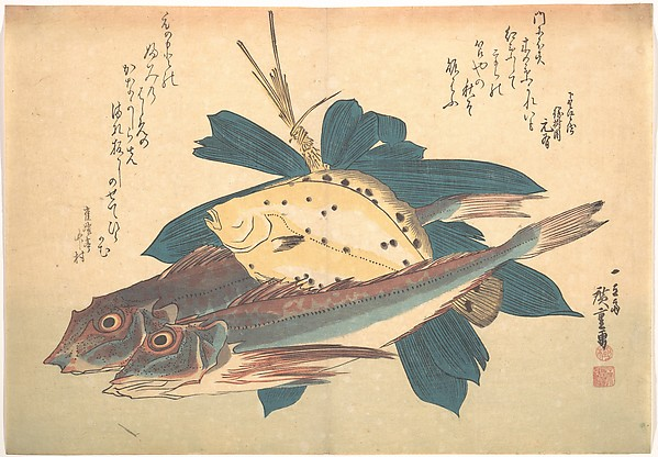 Kanagashira and Karei Fish, from the series Uozukushi (Every Variety of Fish)